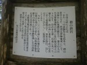 0031_3