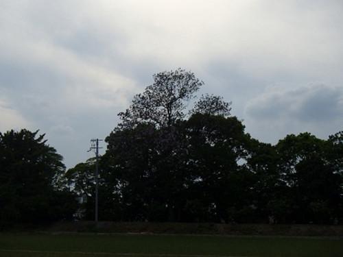 0091_2